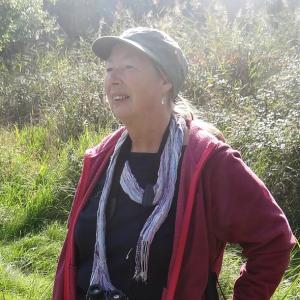 Carol Davey.jpg