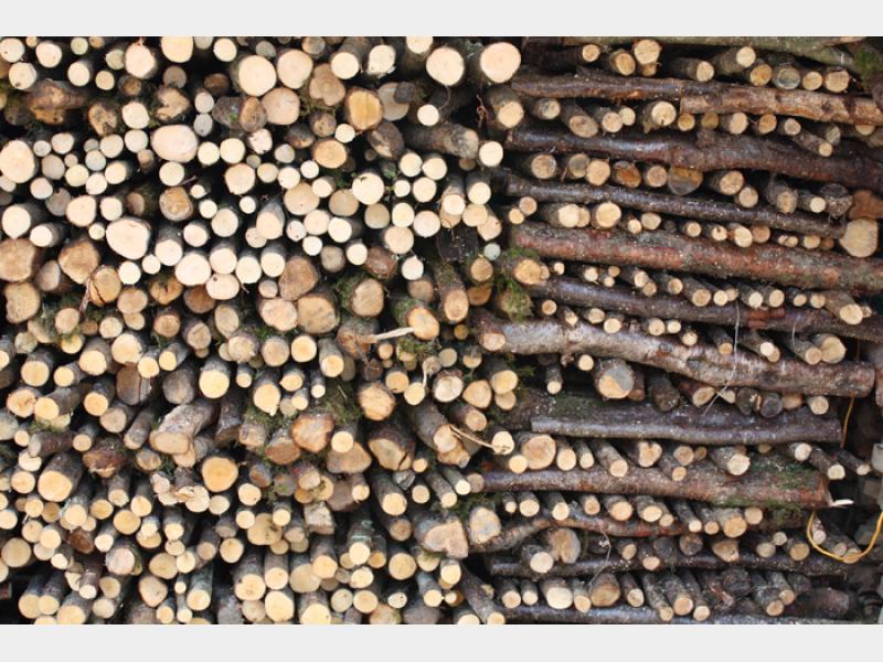 woodstack700.jpg