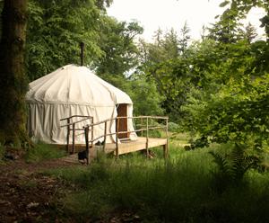 Yurt300.jpg