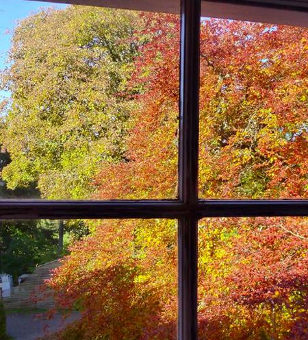 autumnwindow.jpg